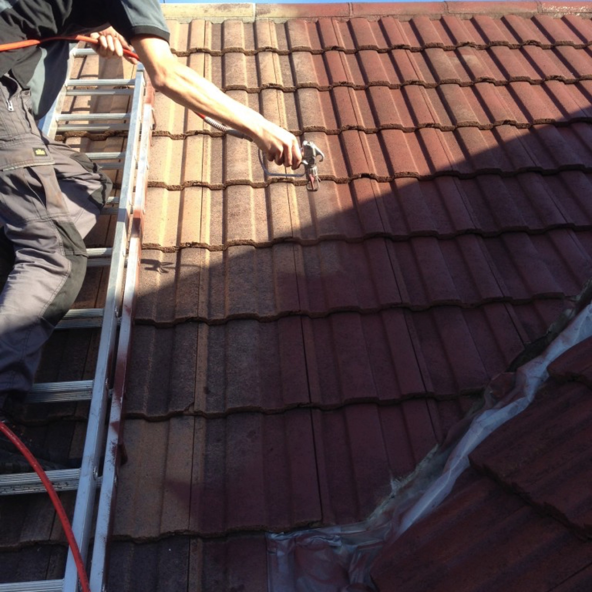 Roof Cleaning Moss Removal And Protective Coatings Tmco